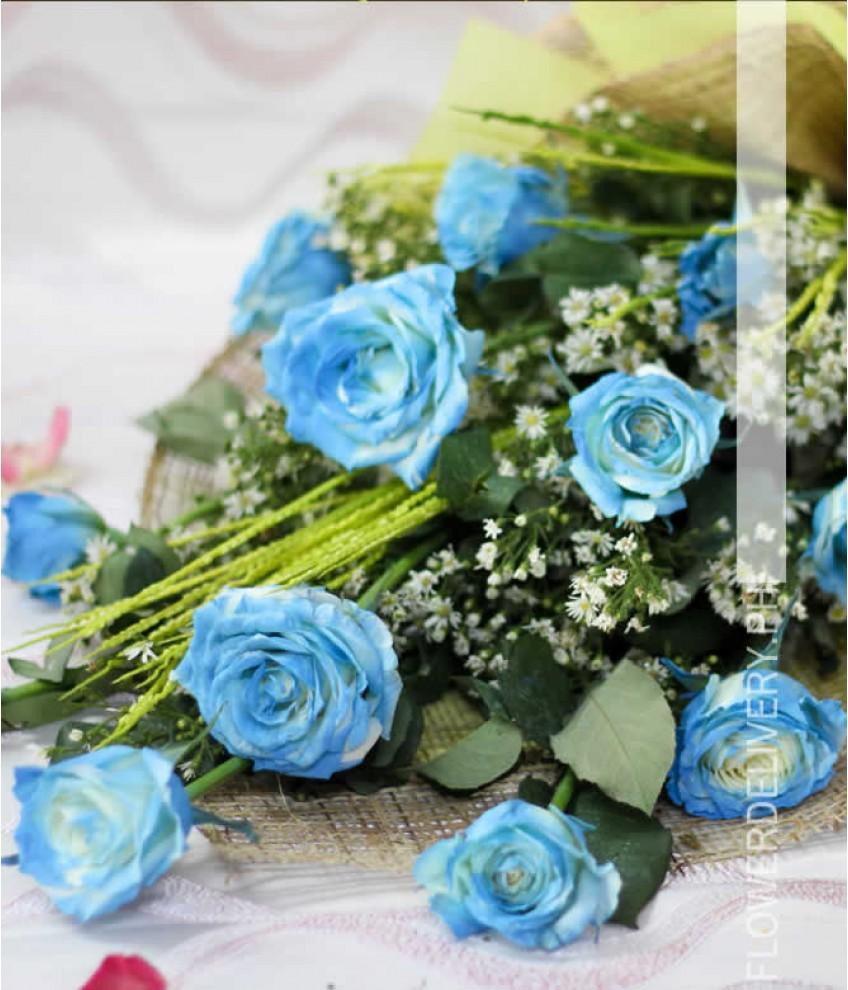 1 dozen blue rose spray arm bouquet