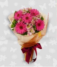 1 Dozen Pink Gerberas with alstroemeria