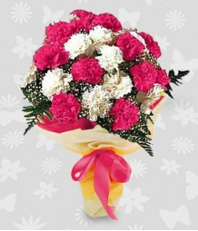 2 dozen pink and white carnations